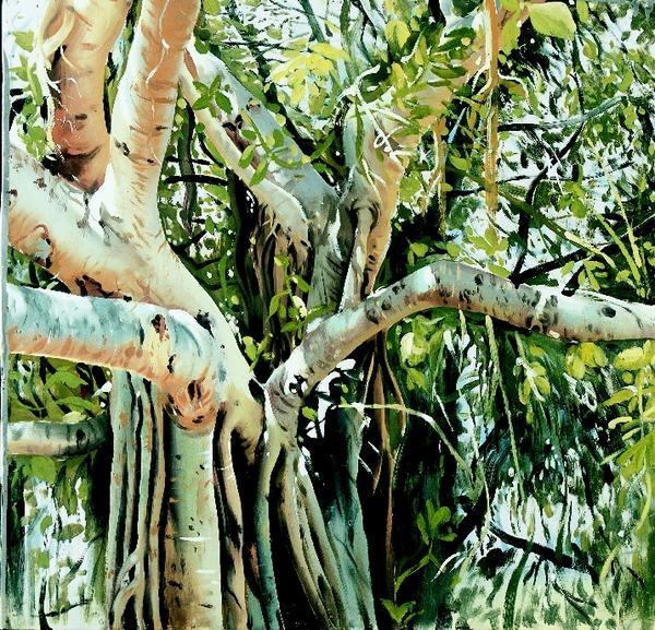 Banyan tree and prayers