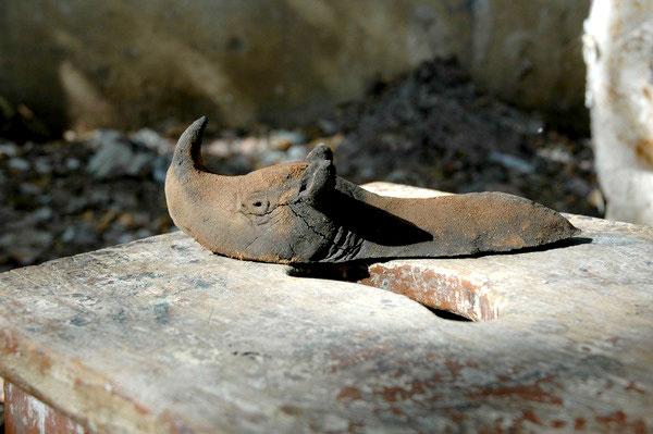 Preghiera per il rinoceronte